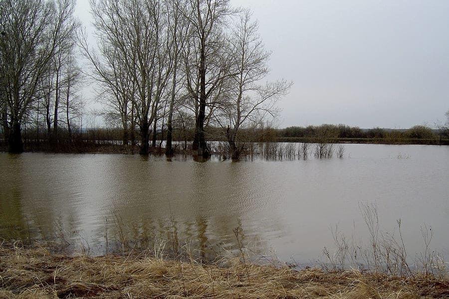 Уровень воды в Сузуне