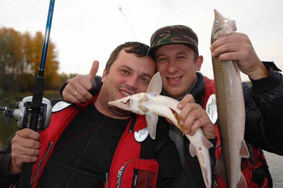 Ловля стерляди catch-and-release — «поймай и выпусти».