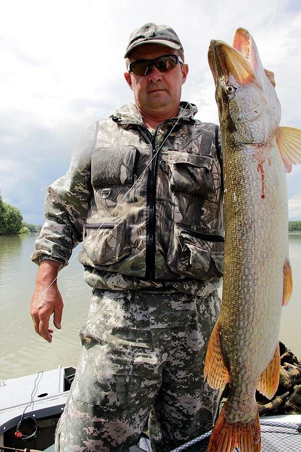 щука трофейная рыбалка