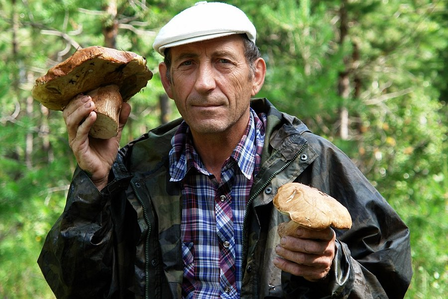 Можно и рыбу ловить, и грибы собирать