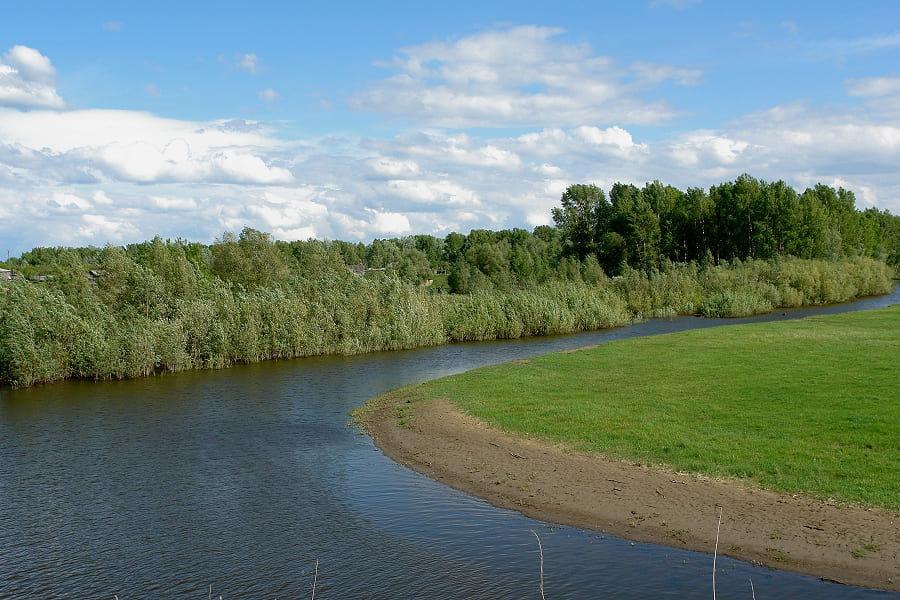 река Верх-Сузун Сузунская Заимка